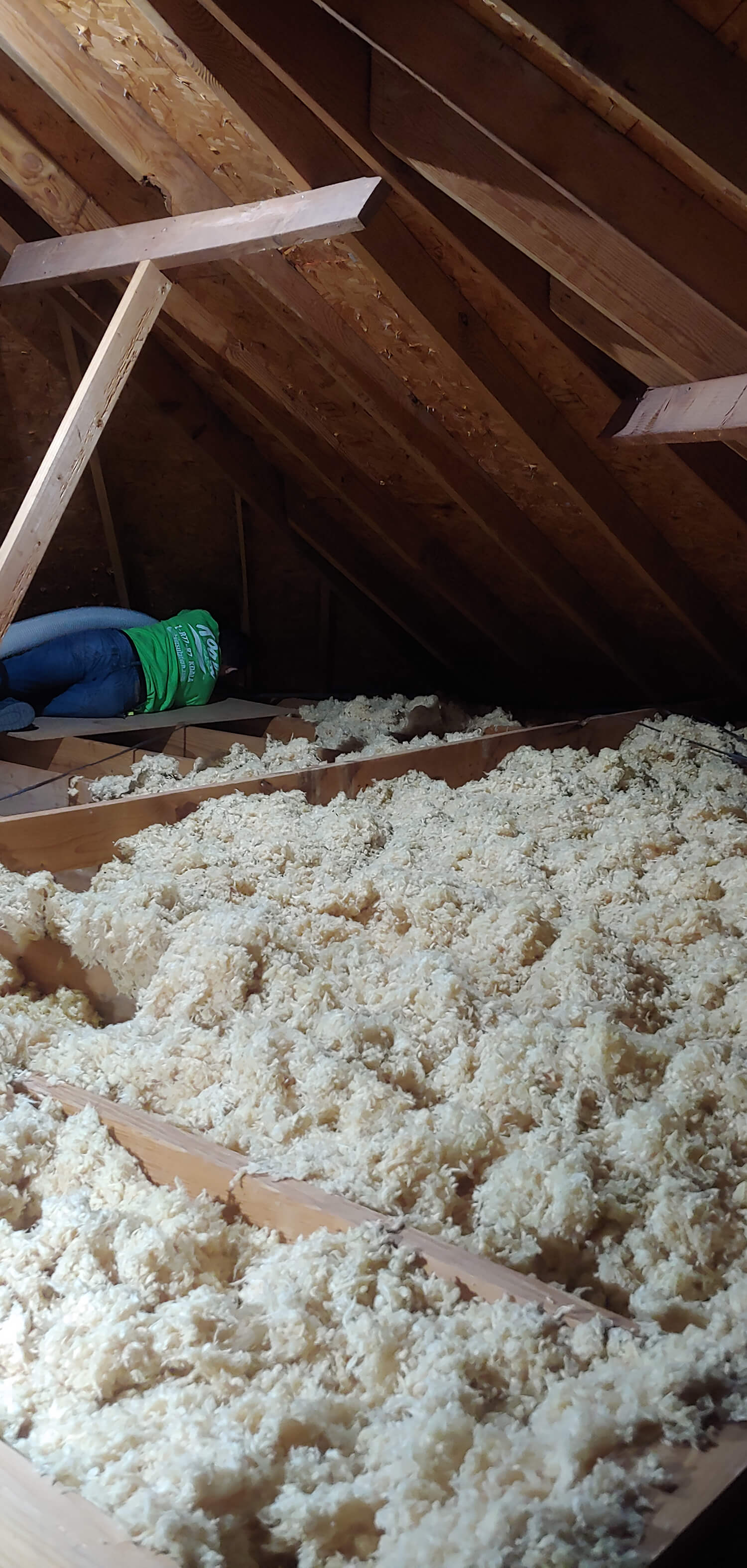 insulation removal Folly Beach