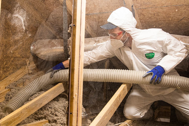 insulation removal Carrollton