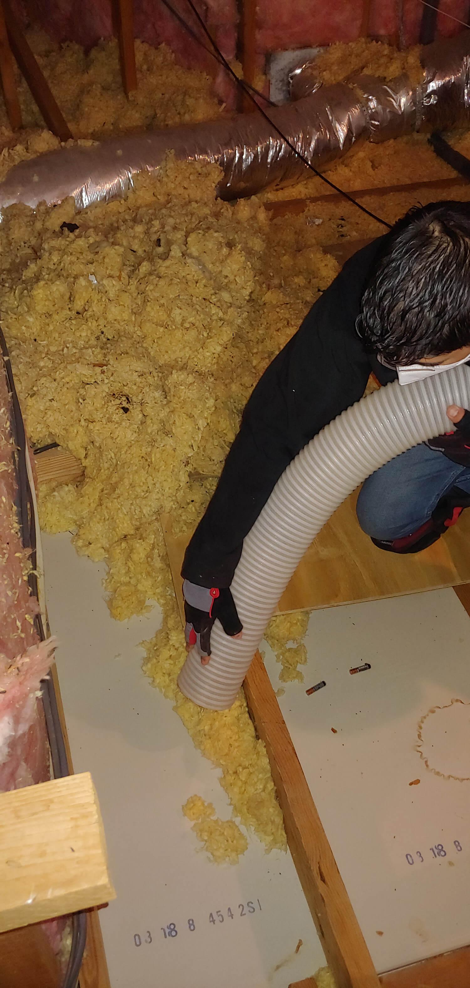 attic insulation removal Newnan